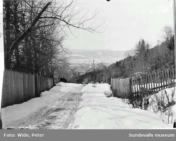 Vinterbild, utsikt mot väster från stadsbacken.