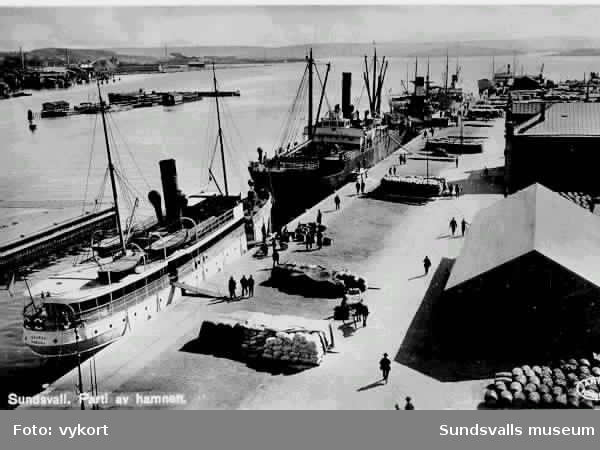Sundsvalls hamn, Båten Dagmar som gick mellan Sundsvall och Vasa.