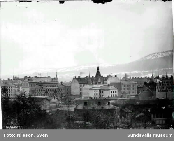 Utsikt mot staden från Stadsbacken.
