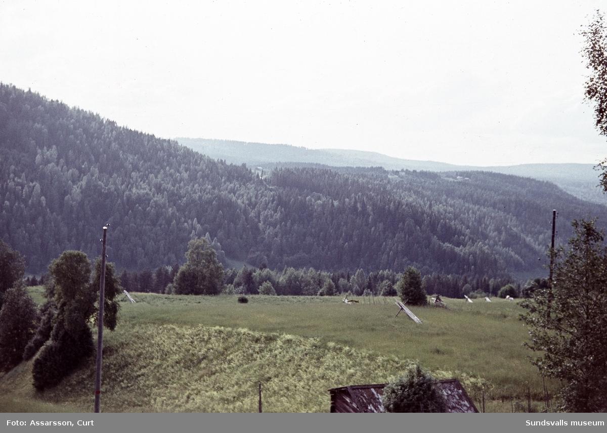 Raviner vid Nilsböle.
