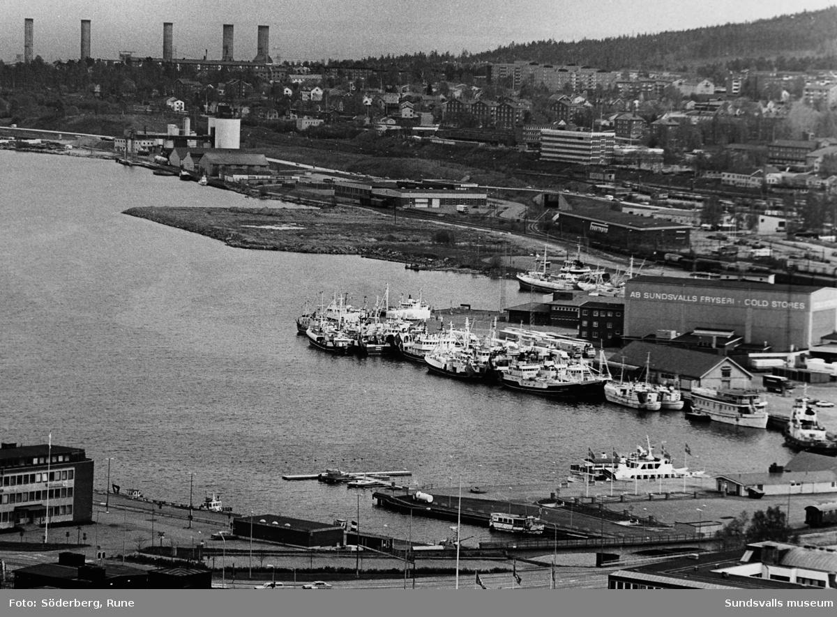 Vy över hamnen mot Skönsmon, ett flertal fiskebåtar ligger i hamn. Många fiskare från västkusten fiskade torsk och strömming här i slutet på 80-talet.