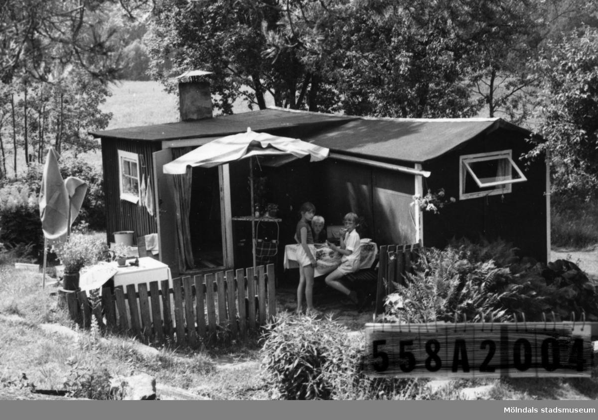 Byggnadsinventering i Lindome 1968. Kimmersbo 1:37. Hus nr: 558A3002. Samma ägare som 558A3001. Benämning: fritidshus och två redskapsbodar. Kvalitet, bostadshus: dålig. Kvalitet, redskapsbodar: mindre god. Material: trä, masonite. Tillfartsväg: ej framkomlig.