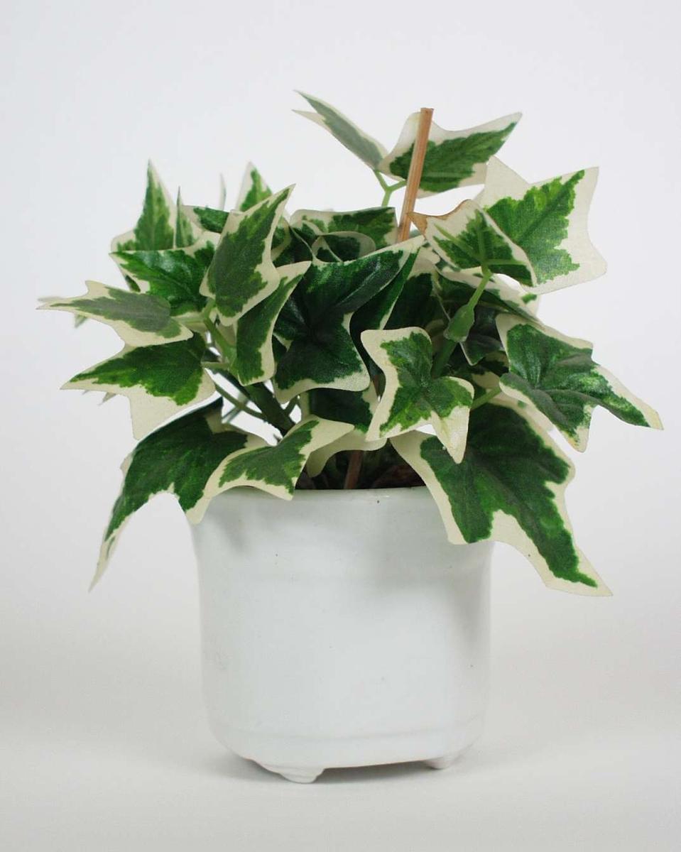 To hvite glaserte kaktuspotter i keramikk med små bein.