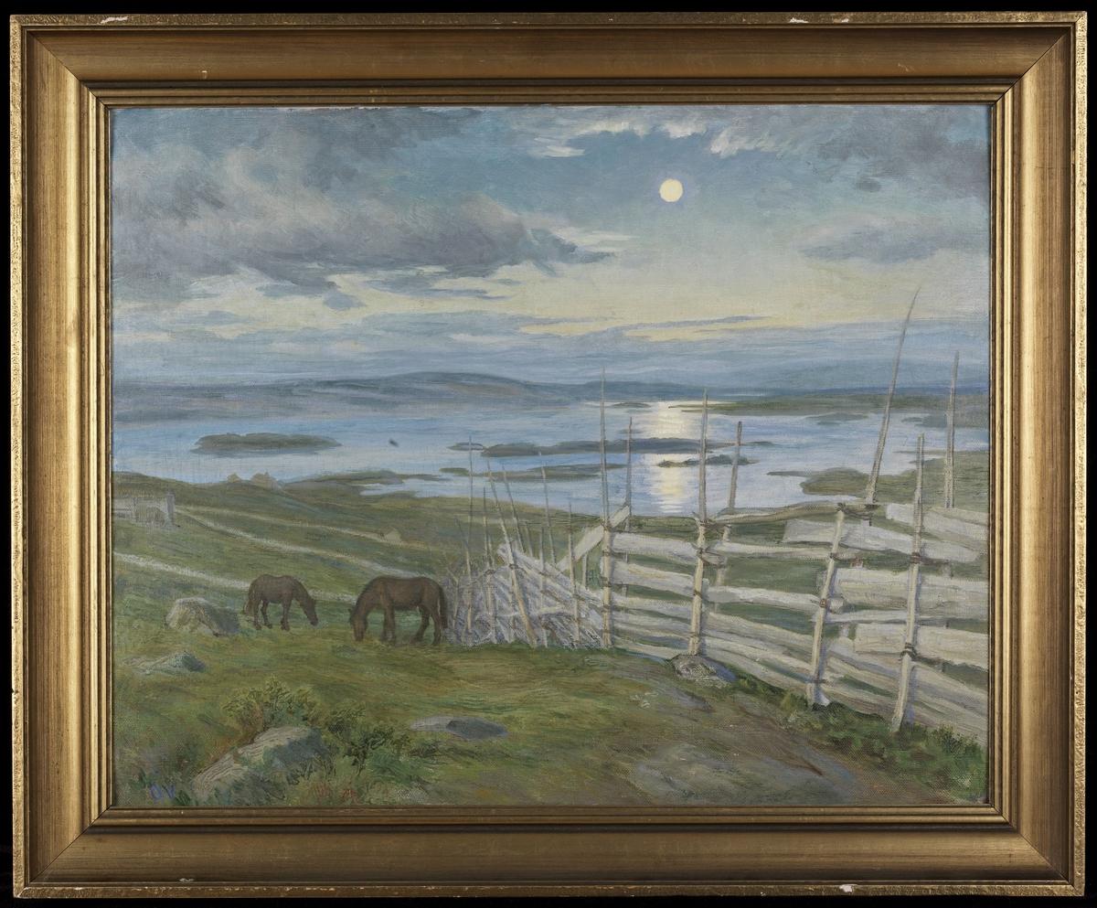 Fjelllandskap, i forgr. skigard, 2 beitende hester, i bakgr. vann m. holmer, blå åser og himmel, måneskinn