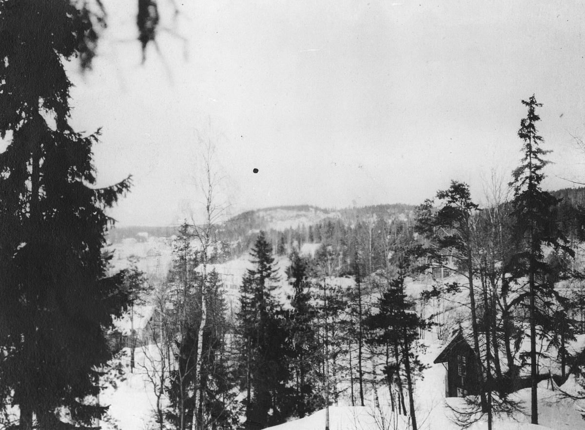 """Utsikt fra """"Solheim"""" i Bekkelivn."""
