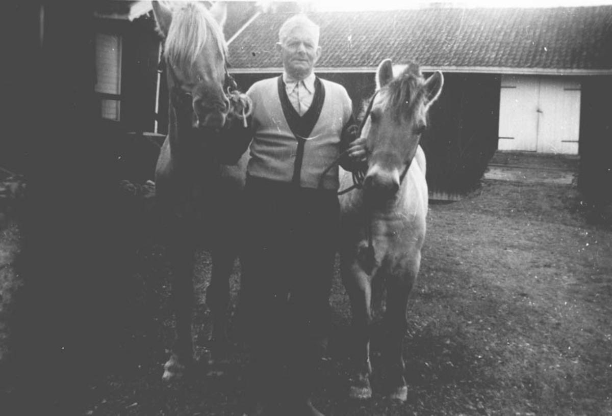 Mann med hester på gardstun.