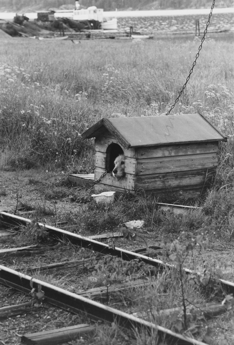 Tertittens nedlagte spor på Skulerud stasjon. D/S Turisten i bakgrunnen.