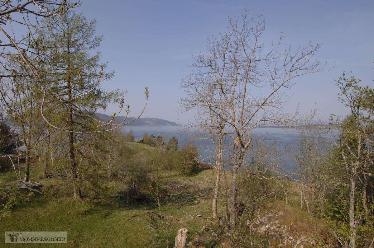 Utsikt innover Langfjorden