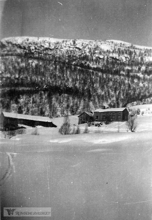 Vinterbilde fra Barstein, Tronteigen.
