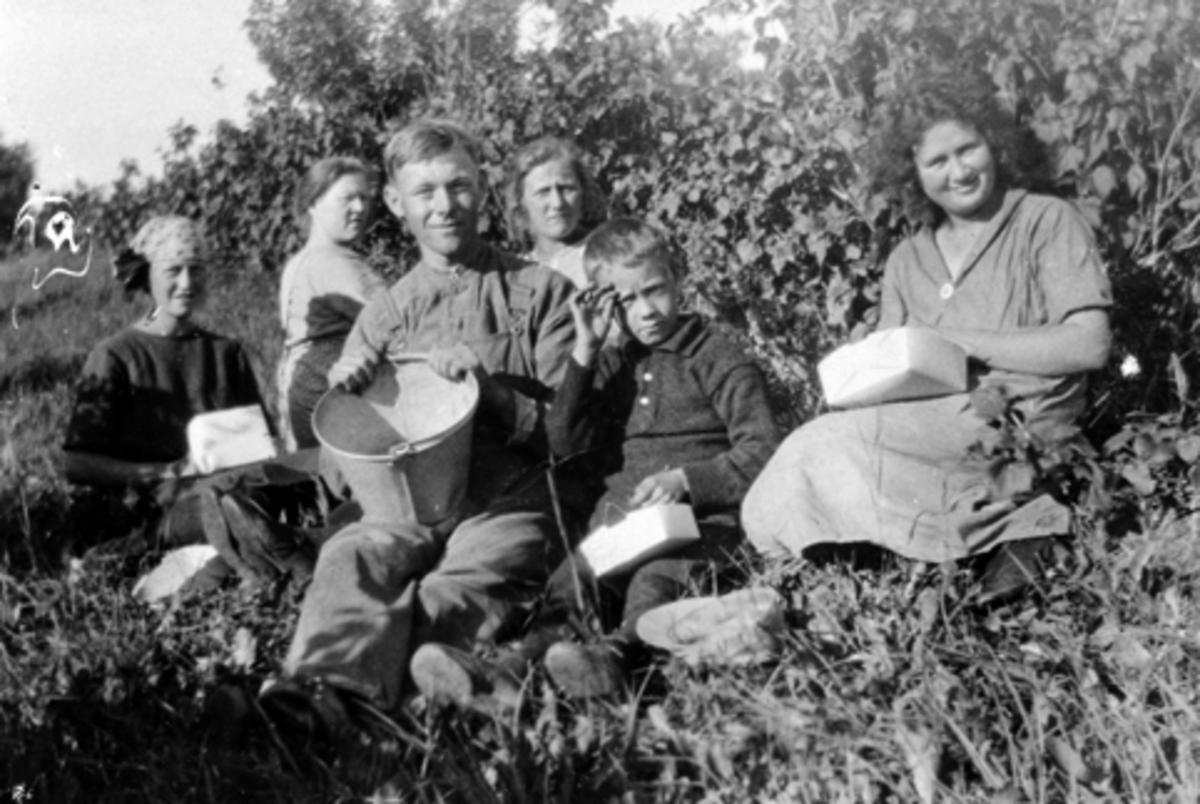 Gruppe ukjente bærplukkere i hagen på Bjørnstad, Nes, Hedmark.