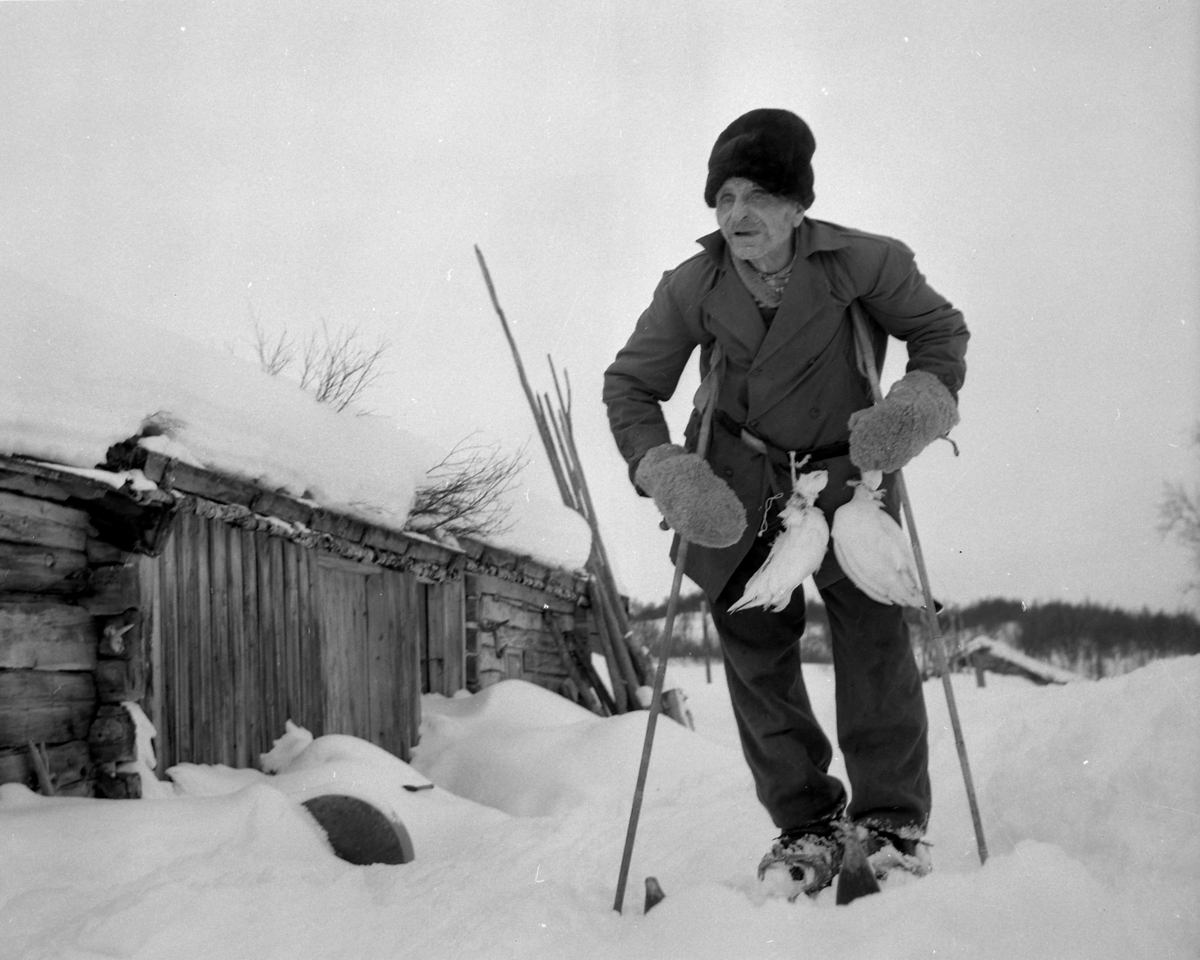 Kalsa-Morten