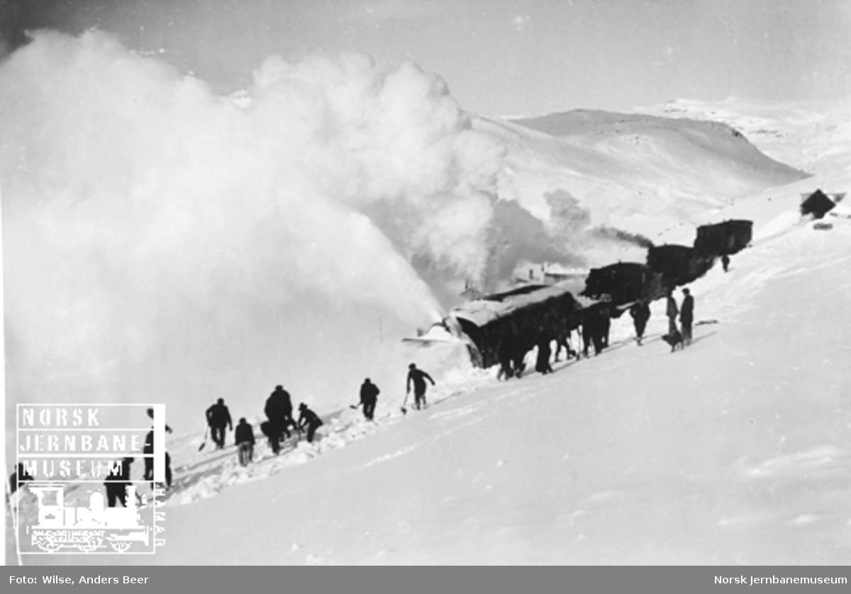 Roterende snøplog skjøvet av tre damplokomotiver med en gjeng snømåkere i forgrunnen