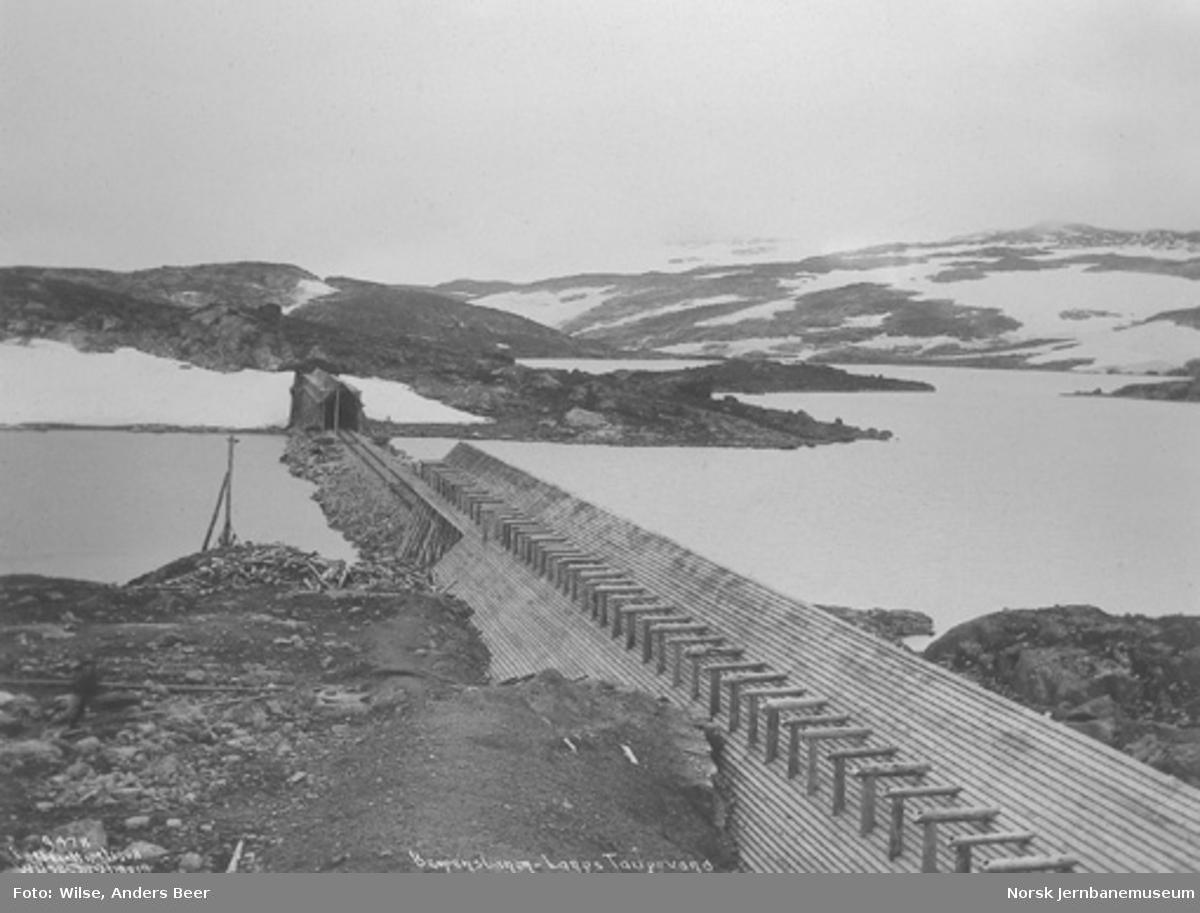 Bergensbanen ved Taugevatn