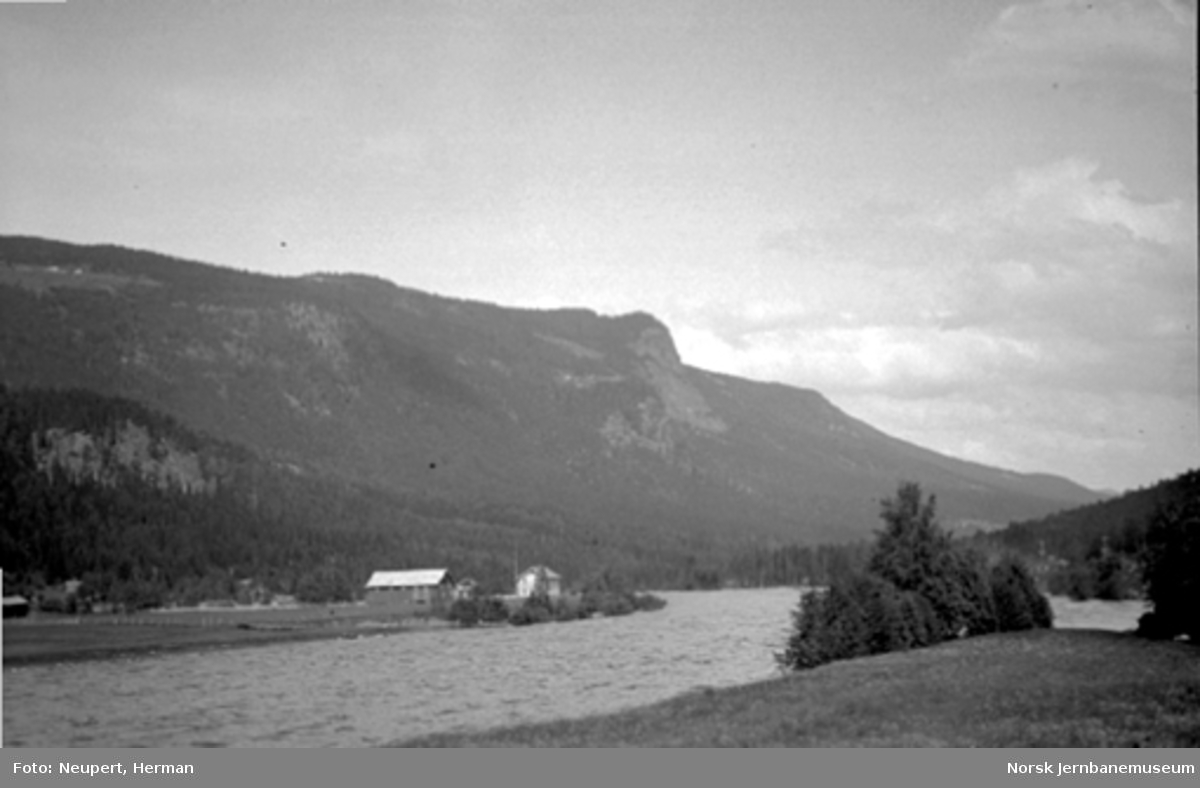 Utsikt fra Bergensbanen, trolig i Hallingdal