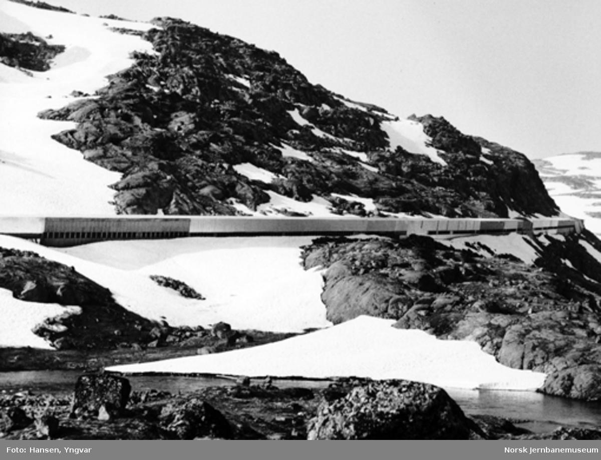 Snøoverbygg ved Lågheller, vest for Taugevatn, av ofotbanetypen