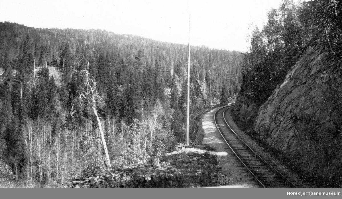 Holmestrand-Vittingfossbanen ved Mossåsen