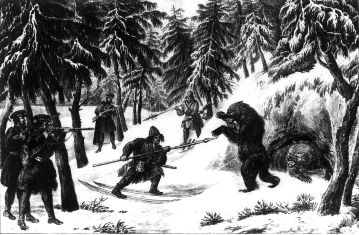 Bjørnejakt